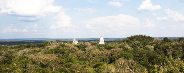 Tour Tikal 1 Día