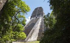 Tours Tikal