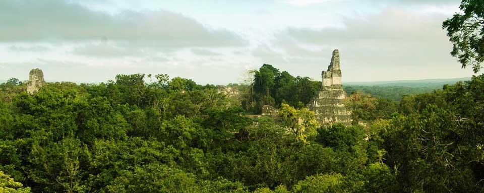 Vista de Tikal